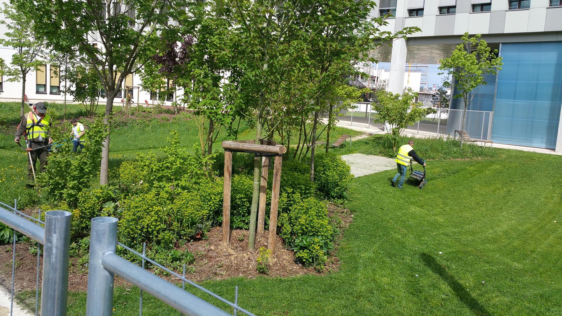 Entreprise Amenagement Exterieur Moselle paysagiste, metz, nancy, thionville - a.keip parcs et jardins